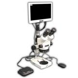 EMZ-8TRH + MA522 + P + MA961C/80/ESD (Cool White) + MA151/35/03 + HD1000-LITE-M Microscope Configuration