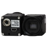 ST3000C Color Digital CCD (2.0MP) USB 2.0 Camera