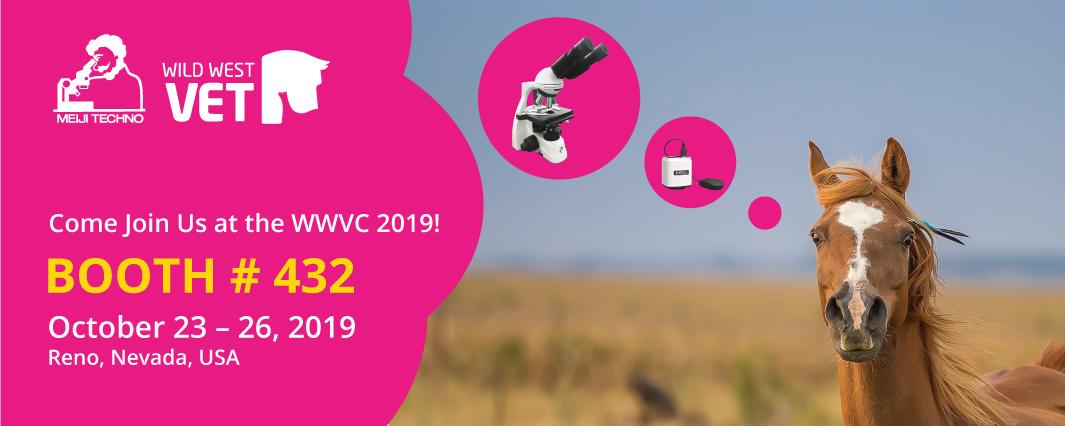 WWVC 2019 Banner