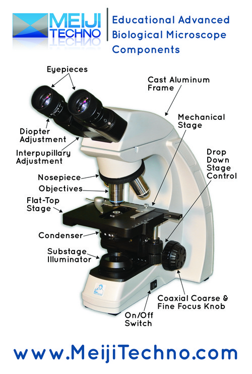 Educational Advanced Biological Microscope