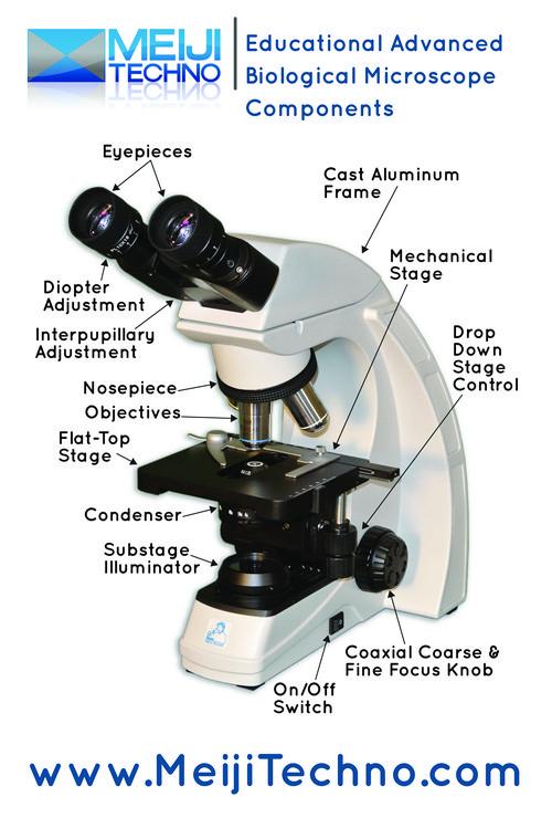 Educational Advanced Biological Microscope