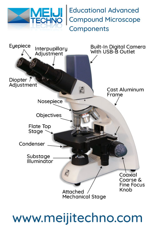 Educational Advanced Compound Microscope