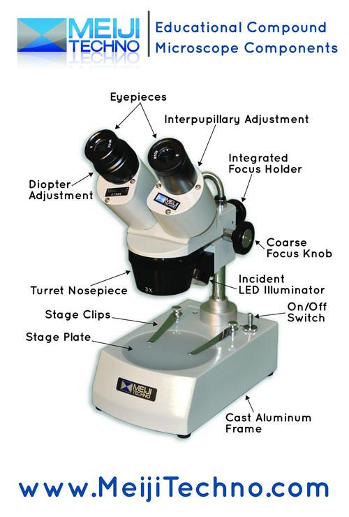 Eductional Stereo Microscope