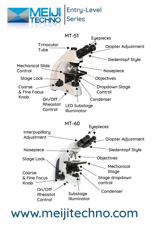 Entry Level Microscope