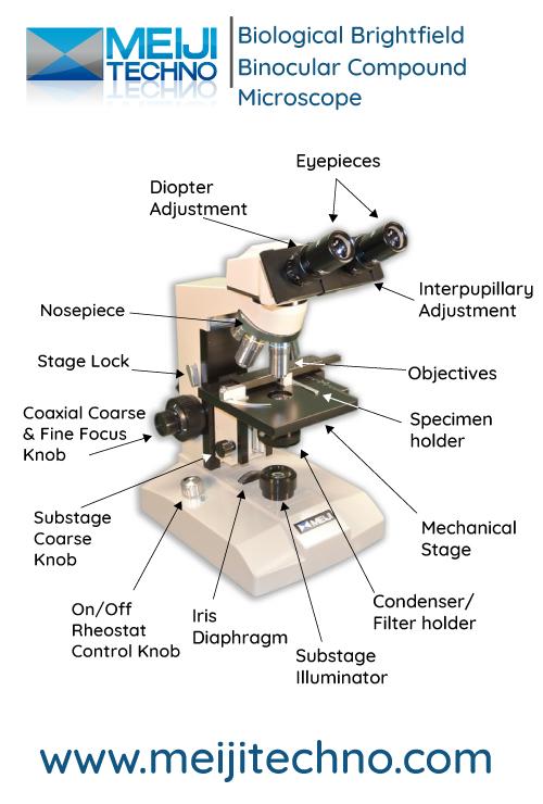 Biological Brightfield Compound Microscope