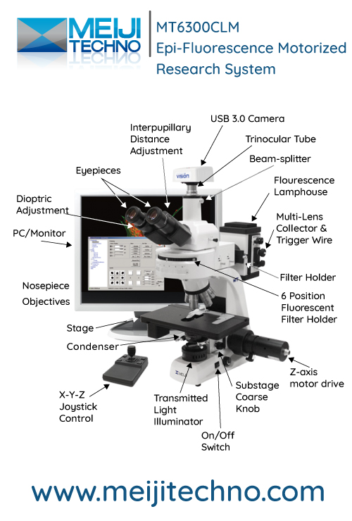 MT6300CLM Epi-Fluorescence Motorized Research Microscope