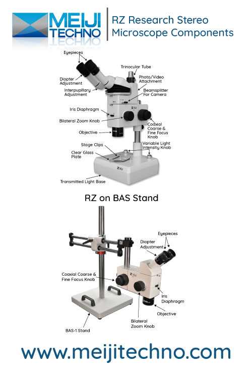 Research Stereo Microscope Terminology