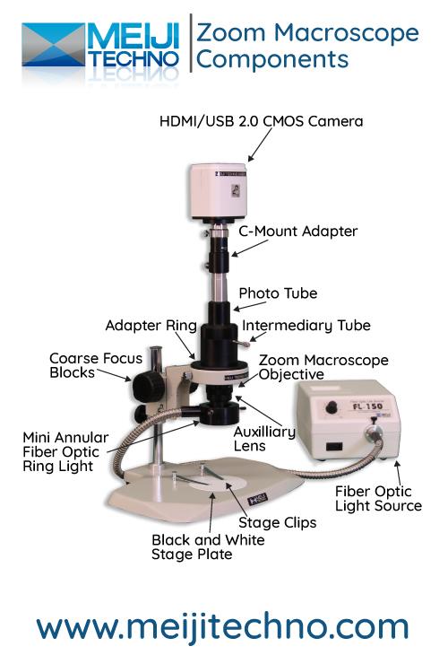 Zoom Macroscope