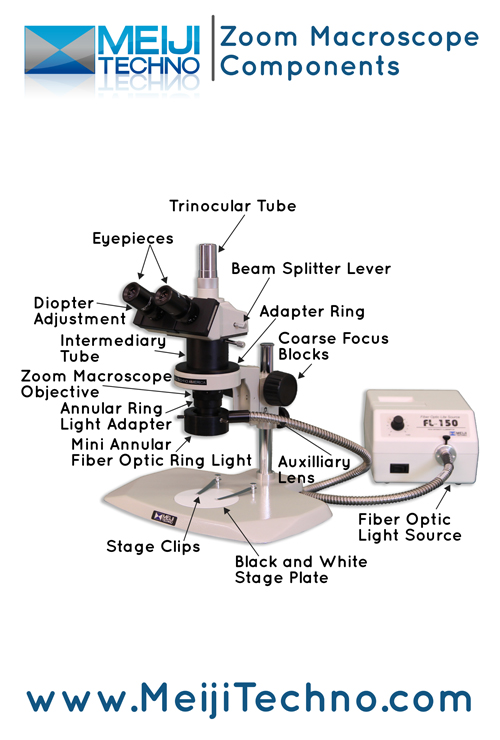 Zoom Macroscope