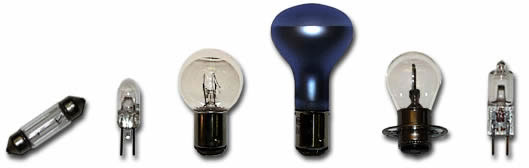 Photo of group one bulbs.